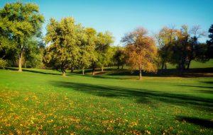 park. Alhambra Title Loans